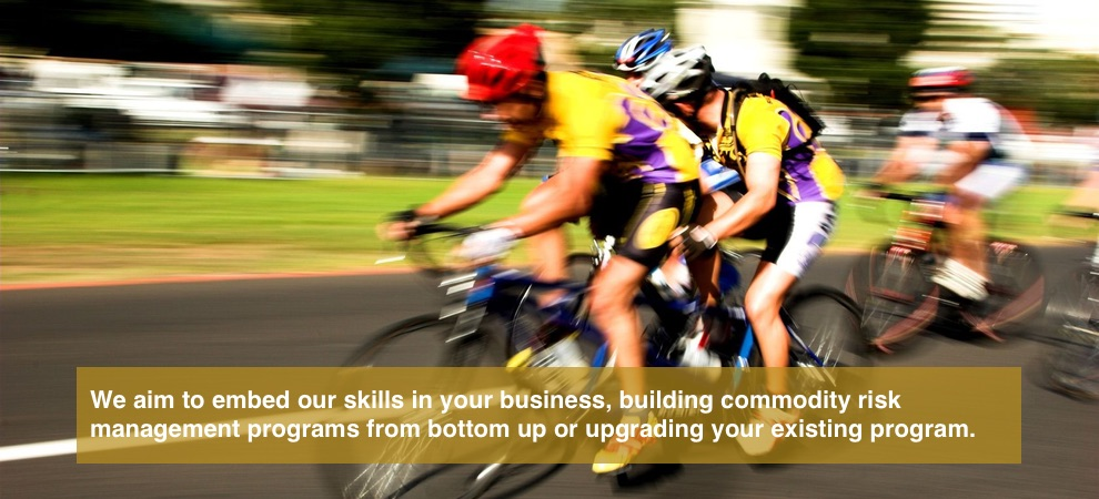 We aim to embed our skills in your business, building commodity risk management programs from bottom up or upgrading your existing program.
