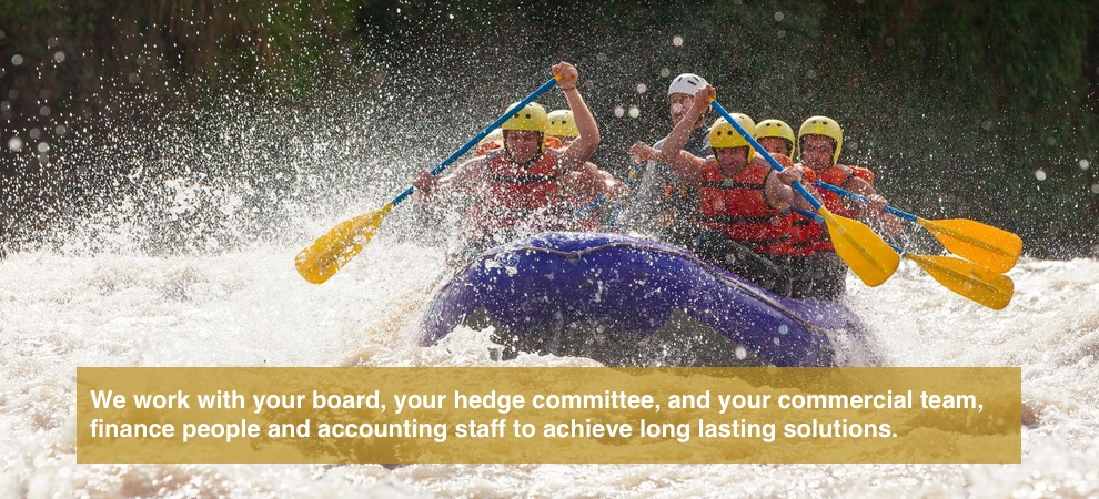 We work with your board, your hedge committee and your commercial team, finance people and accounting staff to achieve long lasting solutions.